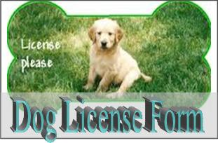 Dog License Form