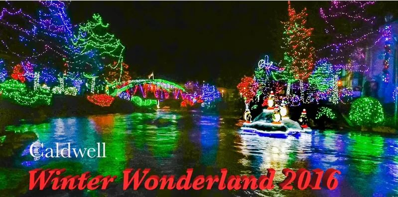Winter Wonderland video link image