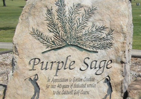 Purple Sage golf course image