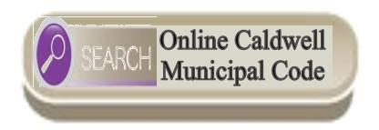 Link to online municipal code